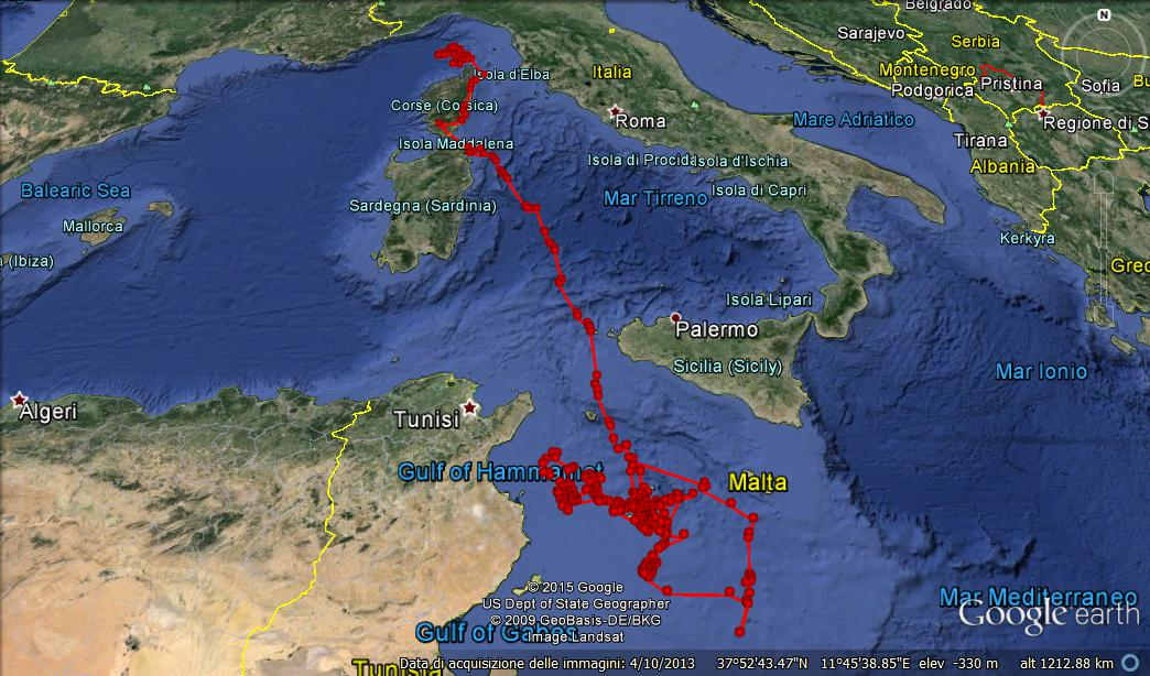 Revealed North-South Fin Whales route across the Mediterranean, from